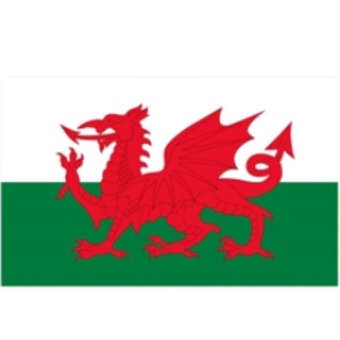 Welsh Red Dragon Flag